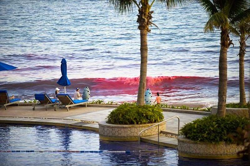 Laut di China Berubah Warna Merah