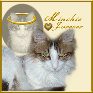 We miss you, dear Minchie