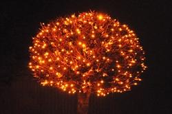 Weihnachtsbeleuchtung...