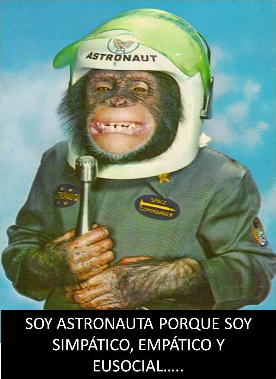 Chimpancé astronauta