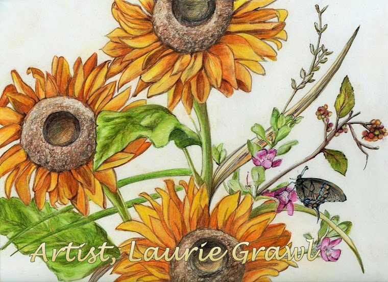 Artist,Laurie Grawl