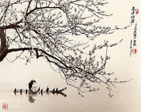 Fotografía de Don Hong Oai: cerezos y barca