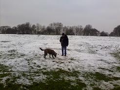 Las imágenes : Heaton Park- Manchester Inglaterra con nieve.