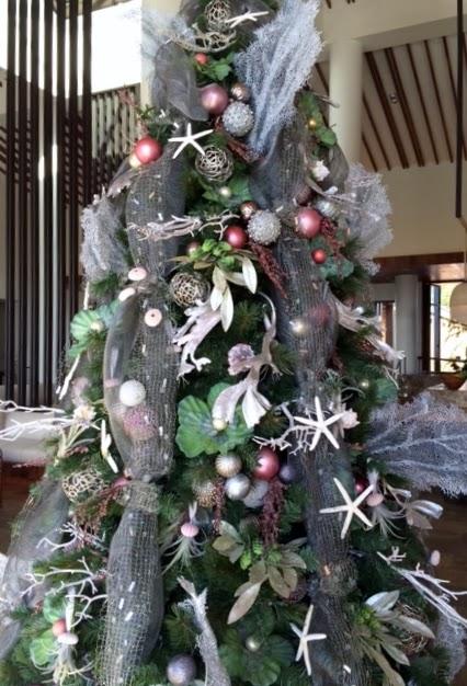 Seahorse & Stripes: Beautiful Succulent & Seashell Christmas Tree