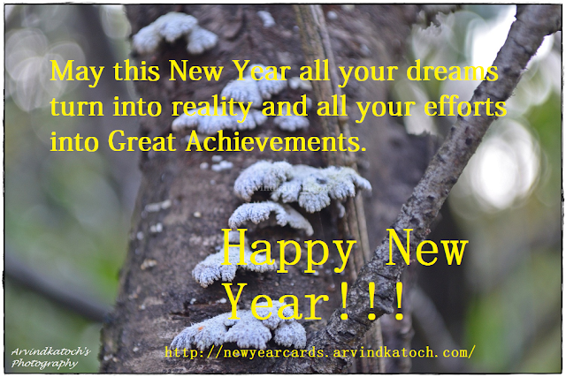 dreams, reality, efforts, Great Achievement, Happy New Year, New Year Card