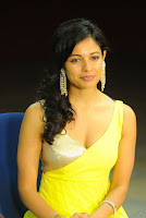 Vishwaroopam, Movie, Actress, Pooja, Kumar, Hot, Sexy, Boob, Cleavage, Show