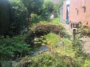 foto's van de tuin