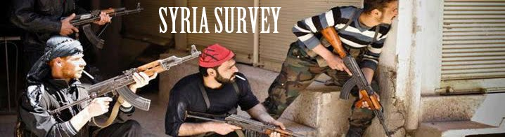 Syria Survey