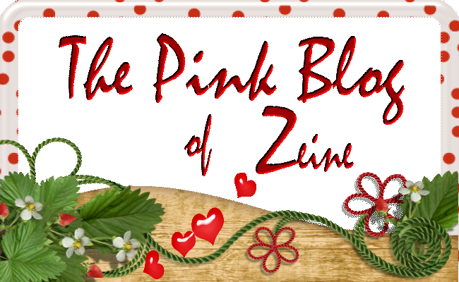 the-pink-blog-of-zeine