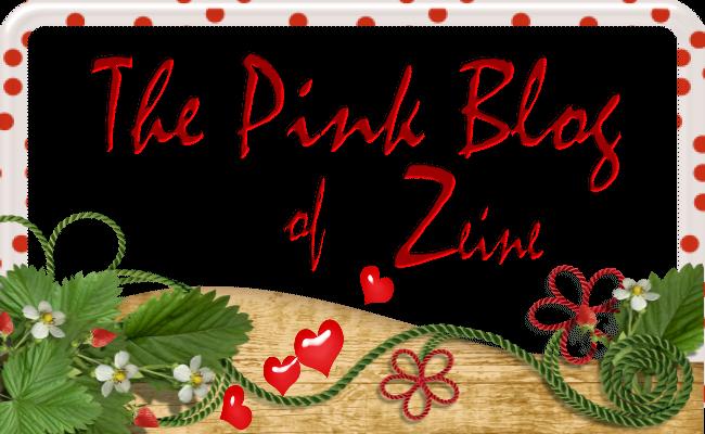 the-pink-blog-of-zeine