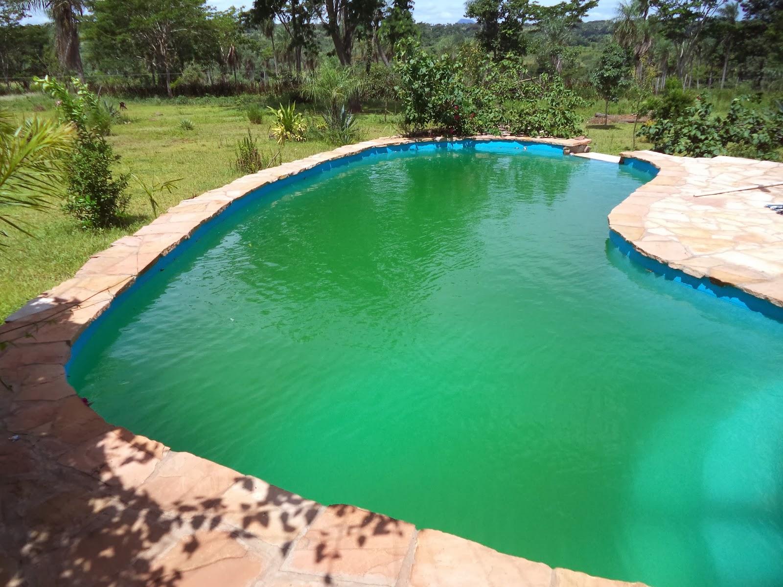nach paraguay auswandern und leben auf der farm wenn der pool gr n ist. Black Bedroom Furniture Sets. Home Design Ideas