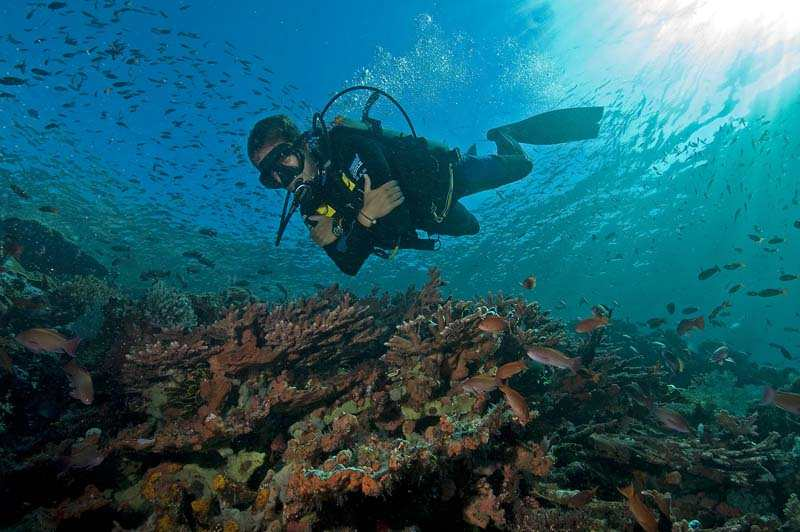 Taman Nasional Kepulauan Raja Ampat
