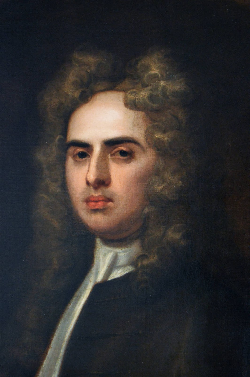 the dislike of jonathan swift with the current plantation system in ireland Chapter 6 examines the brutal nature of the british military justice system in the region, and chapters 7 and 8 treat the wars-one against a political enemy, the other against an epidemiological one.