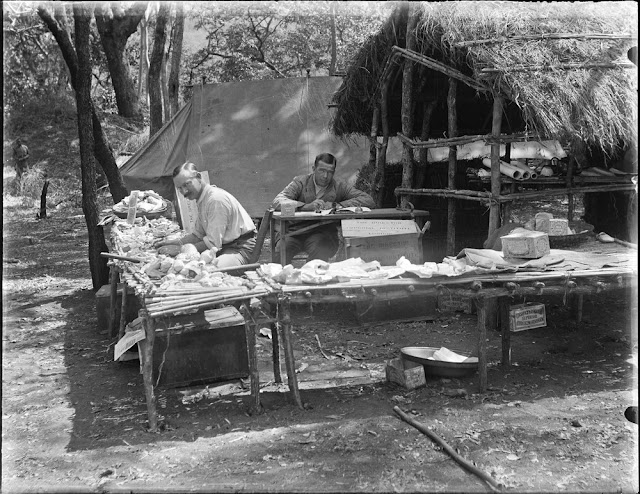 Geological survey team at work in the field camp. E.O. Teale photograph collection.