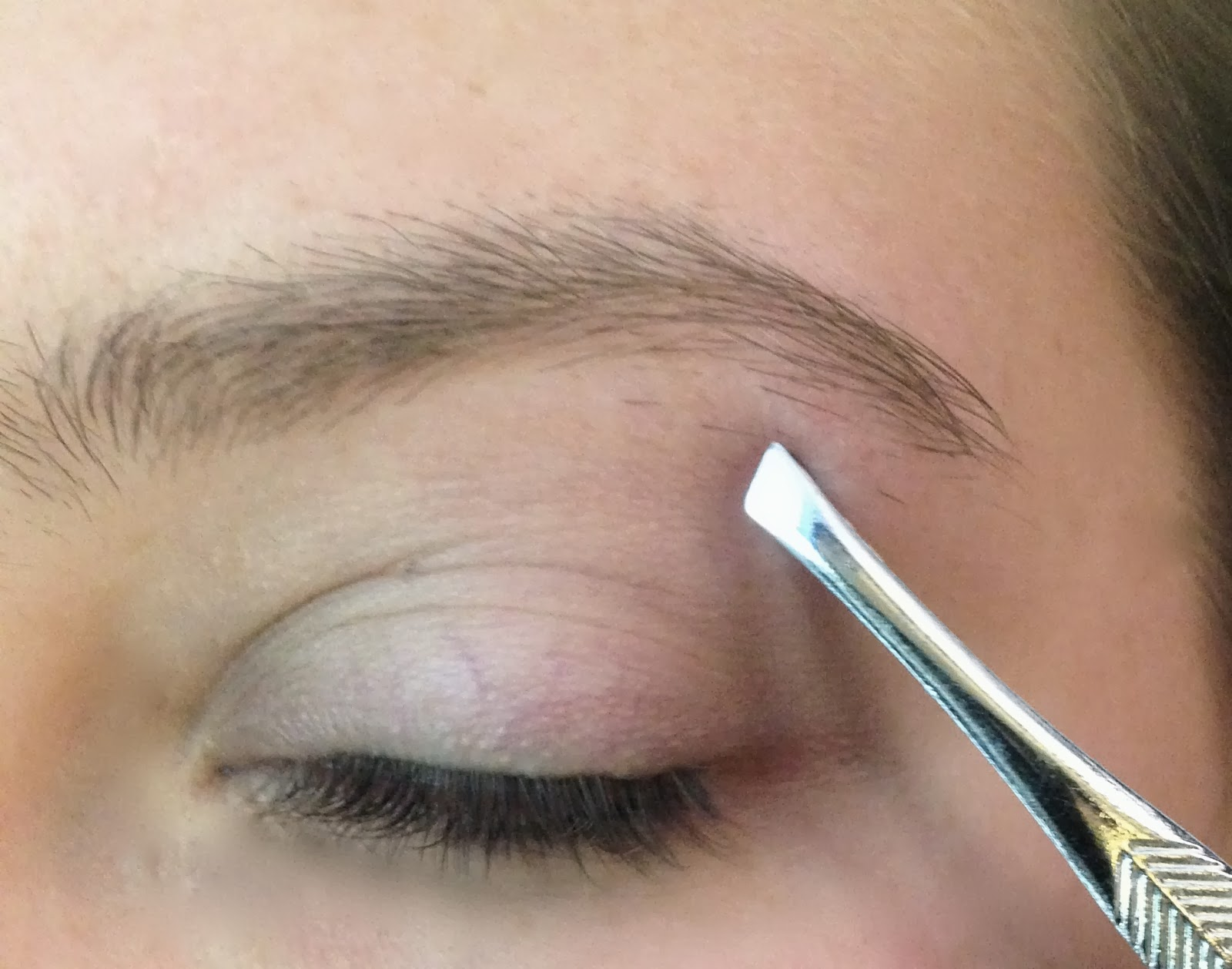 Cheyenne Fitness How To Groom Your Eyebrows At Home