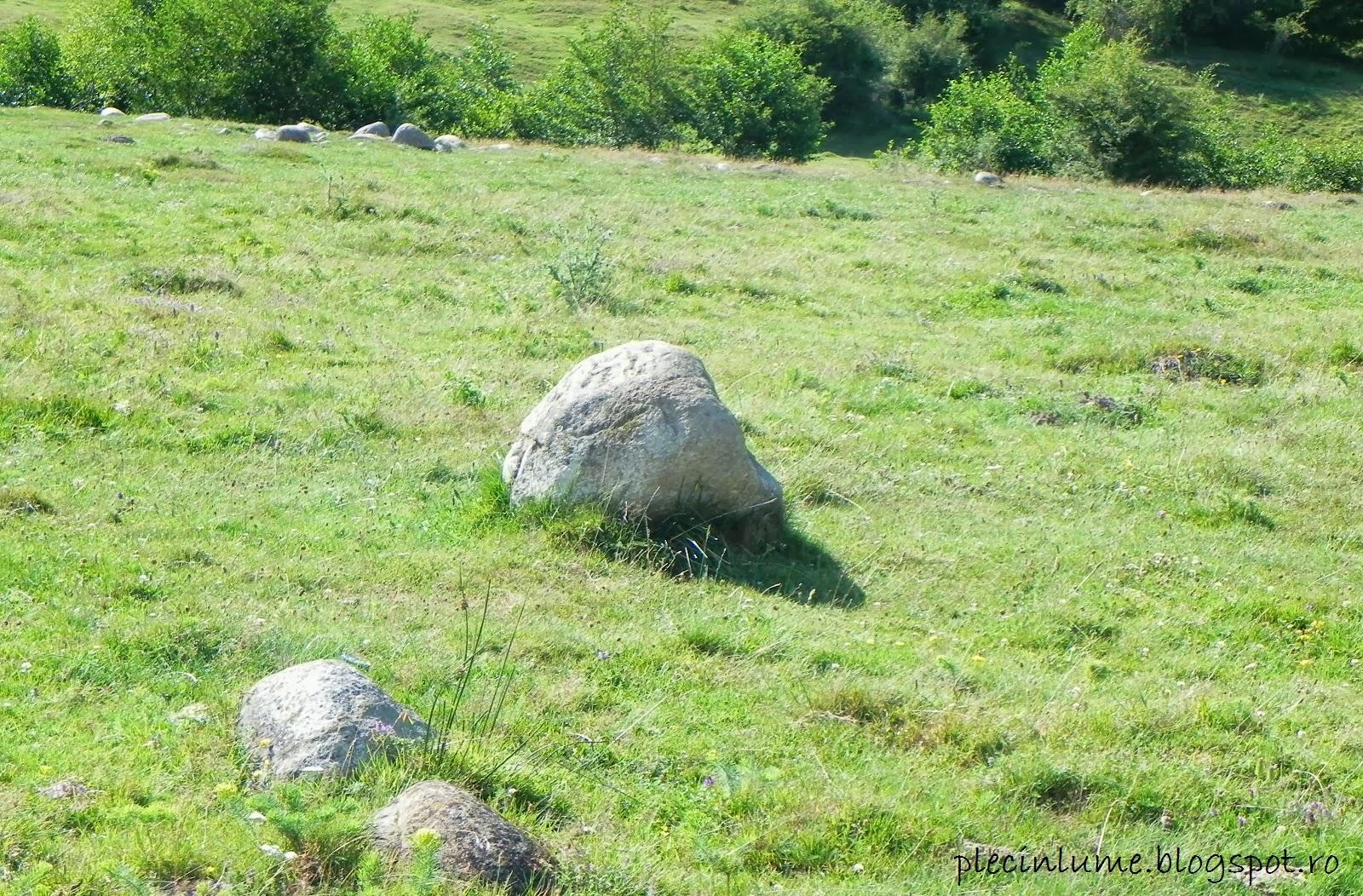 Granit in Geoparcul dinozaurilor