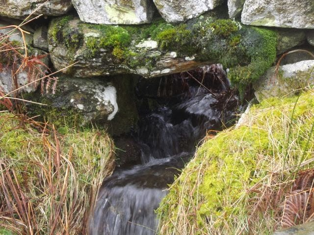 rivulet through dry stone wall