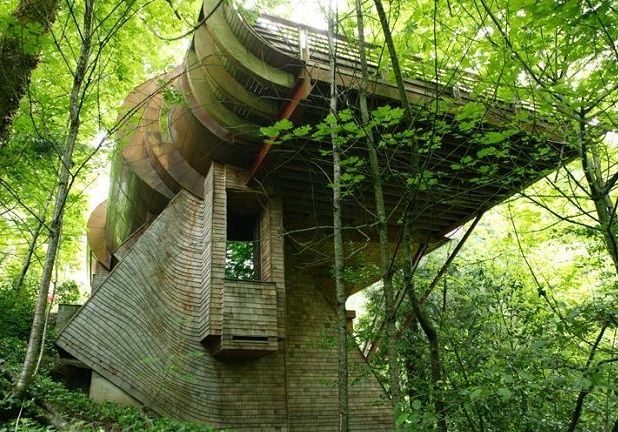 Tree houses world most amazing tree houses most for Amazing home pictures