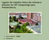 Árbores CEP Campolongo