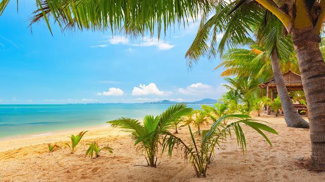 Hermosa Playa en Ko Samui tailandia