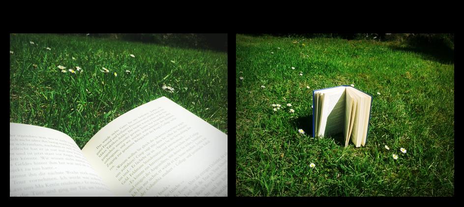 DieKlee´s Bücherblog