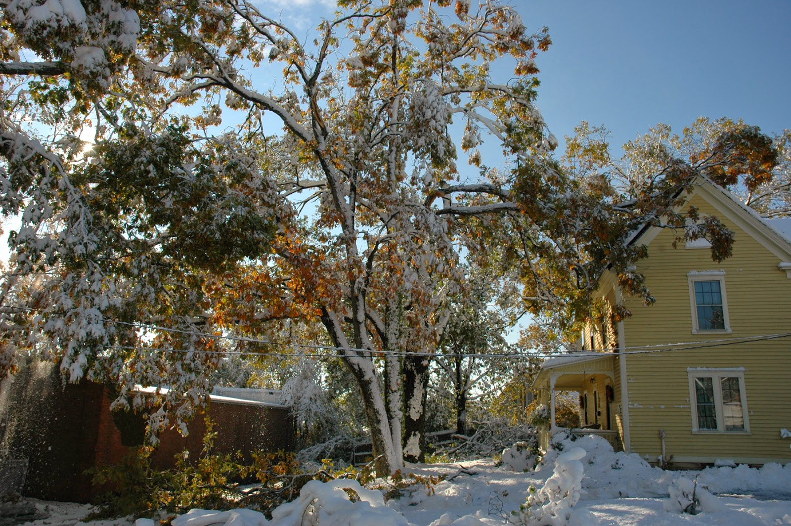 Tammy Sue Willey, Storm Albert October 2011