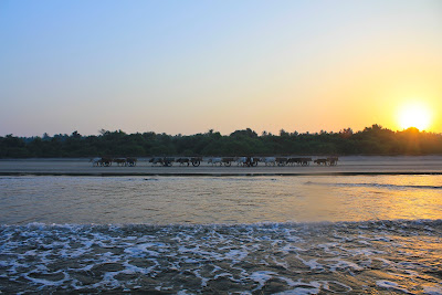 Diveagar beach, Konkan coast, Konkan beaches, Konkan village