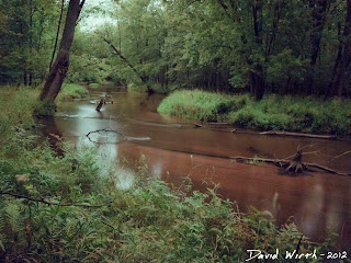 sandy river, manistee national forest trail, hiking, camping