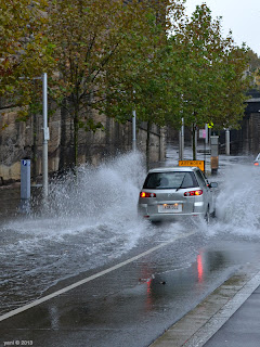 all the water in sydney drains down to the lowest points