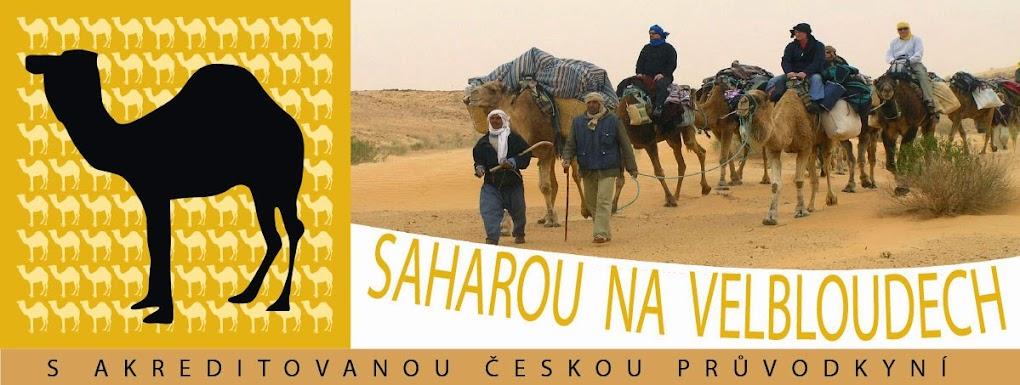 Týdenní výprava na velbloudech do nitra tuniské Sahary