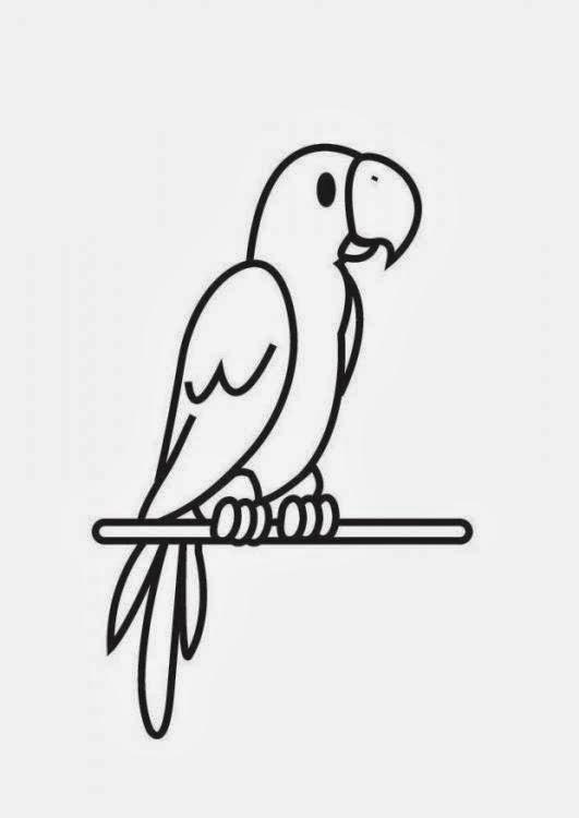 Malvorlagen gratis malvorlagen papagei - Dessins de perroquets ...