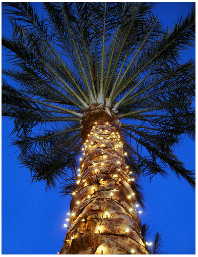 christmas palm tree-#50