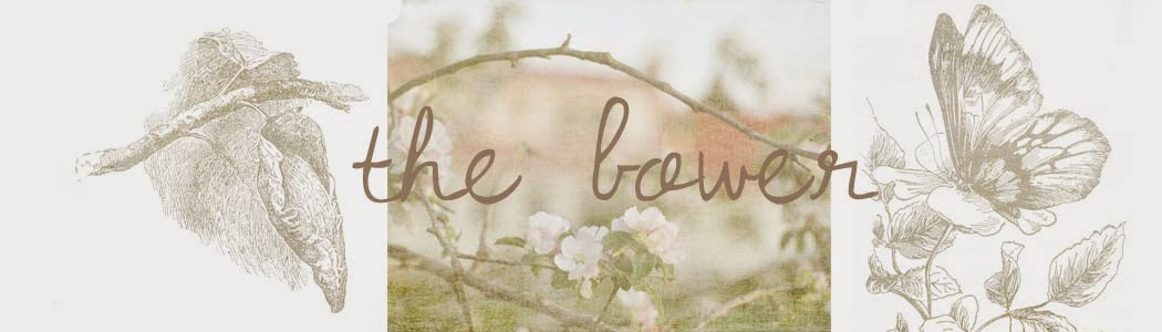 The Bower-Lesley's online journal