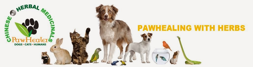 PawHealer's Success Stories