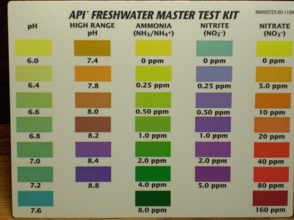 Api nitrite color chart aquaponics labs the theory behind aquaponics labs the theory behind aquaponics nvjuhfo Gallery