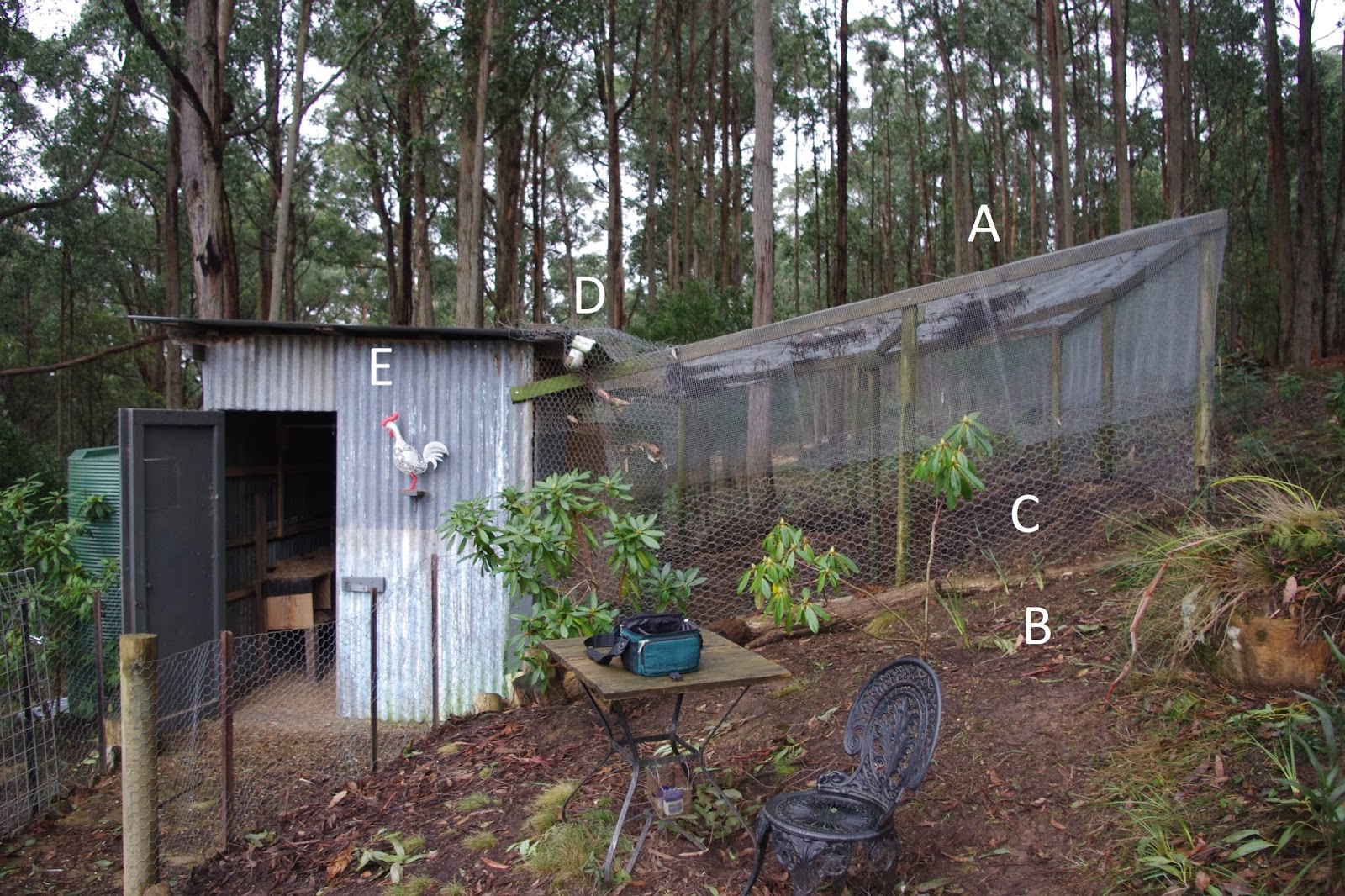 Weekly Notes From Fernglade Farm A Permaculture And