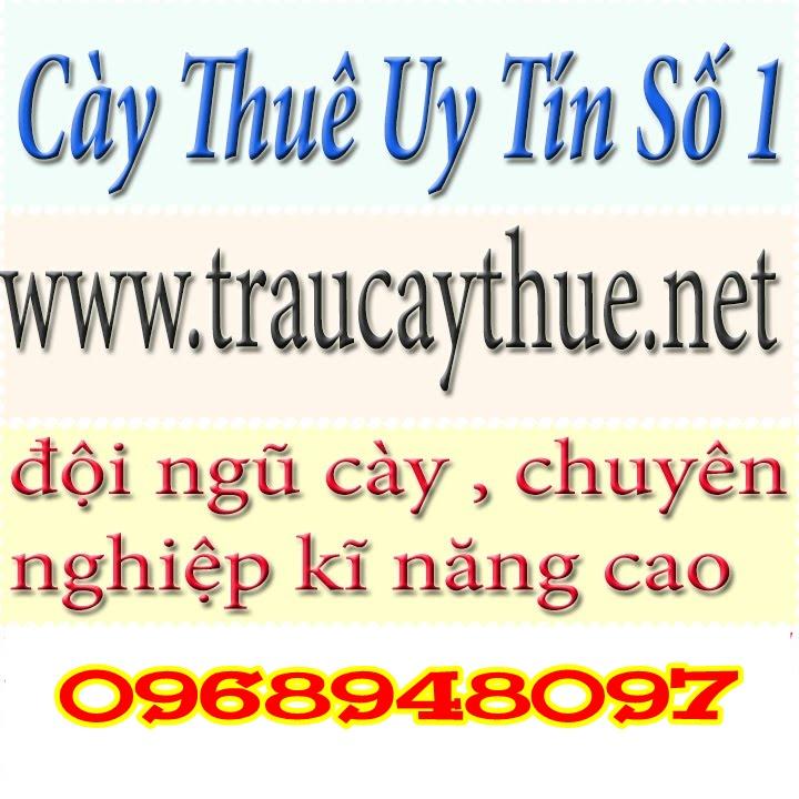 Cày Thuê