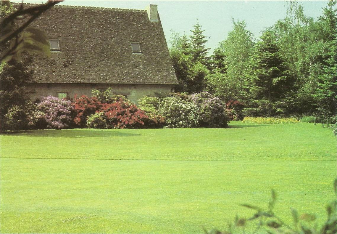 Le tapis vert cr er une pelouse comment a marche for Creation pelouse