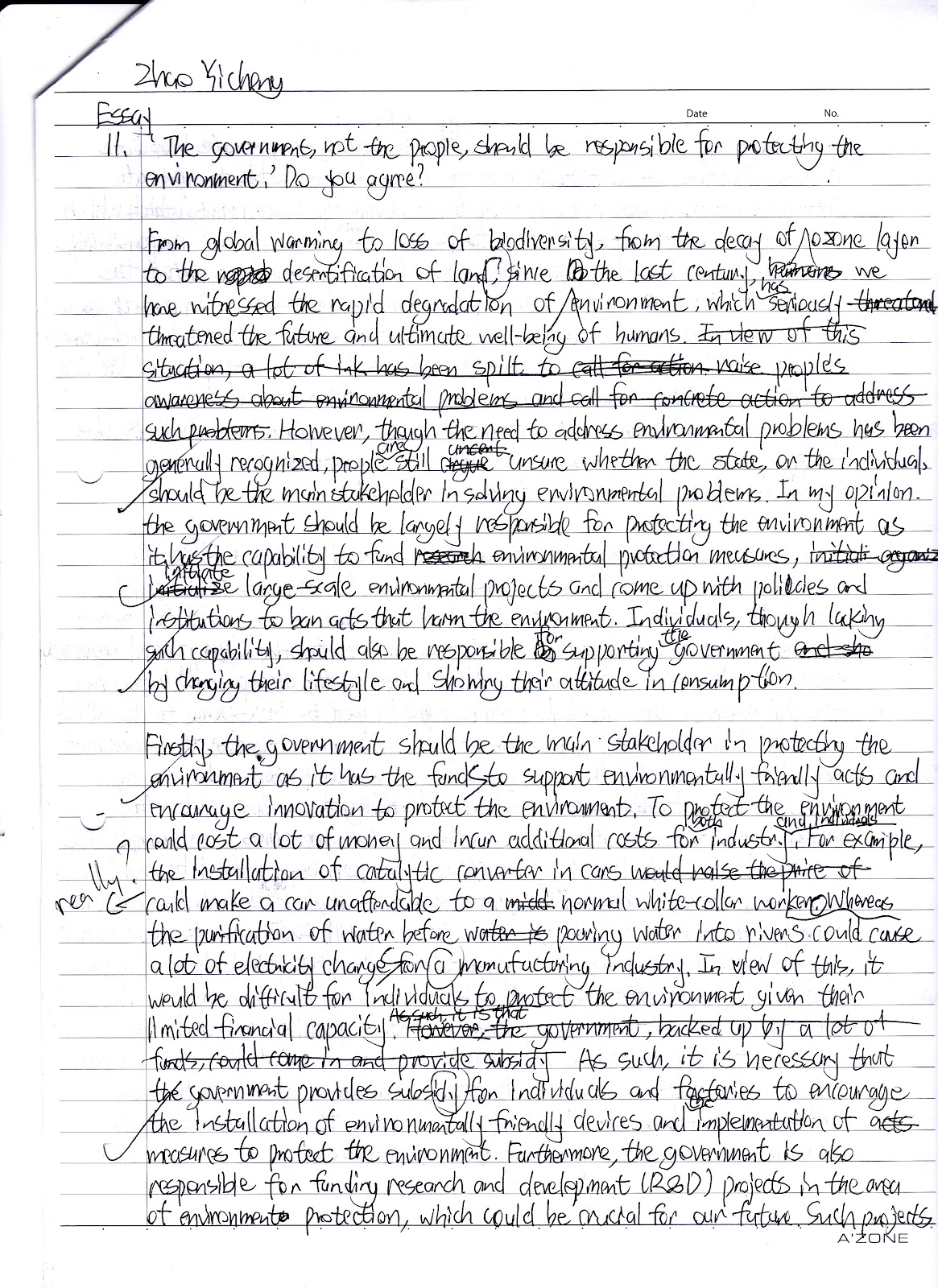 an essay on environment environmental law essay ks science ...