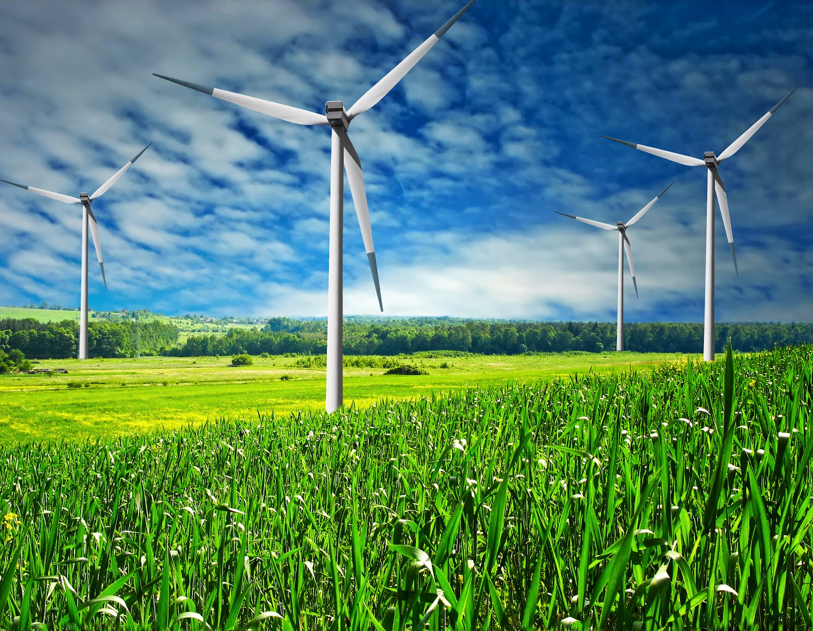 RedVector Green Blog: New Wind Power Course + 3 New Webinars