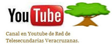 Canal en Youtube de la Red de Telesecundarias Veracruzanas