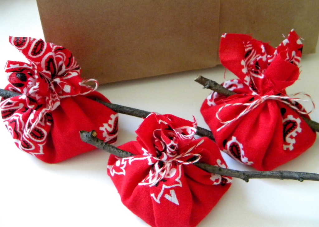 Homework a creative blog celebrations red bandana party for Bag decoration ideas