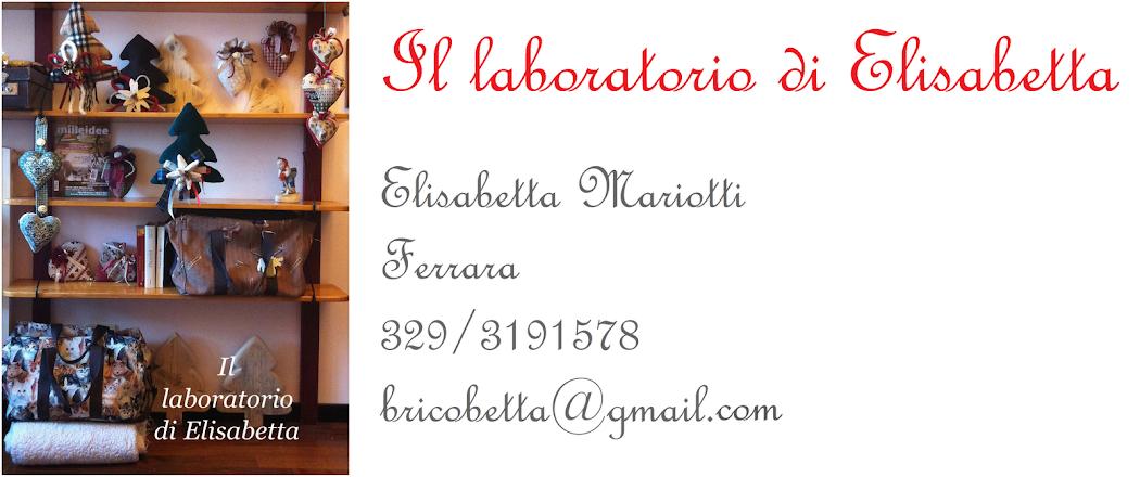 Il laboratorio di Elisabetta