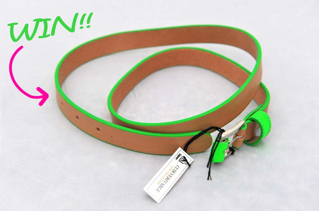 Mania_mia_blogger_giveaway_win_fashion_belt