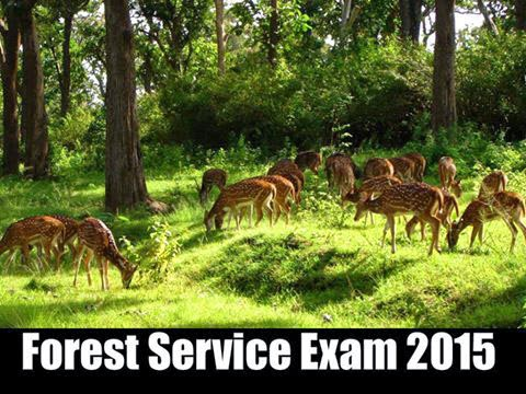 how to pass public sector exams