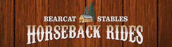 Bearcat Stables