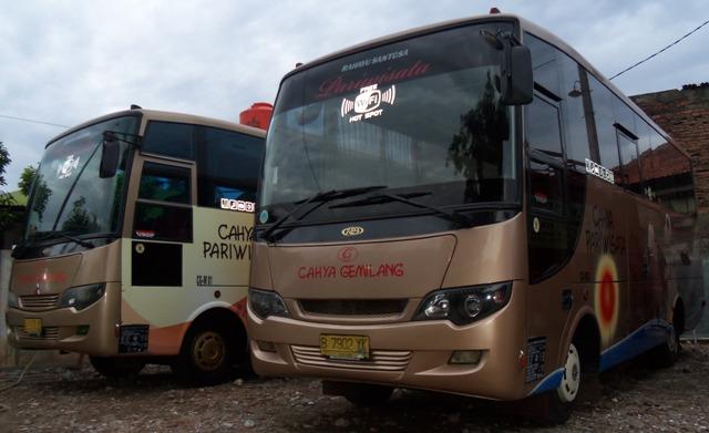 MEDIUM BUS 29 - 31 SEAT