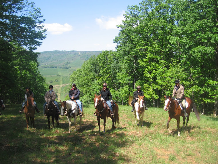 A group of trail riders at Sky Meadows State Park