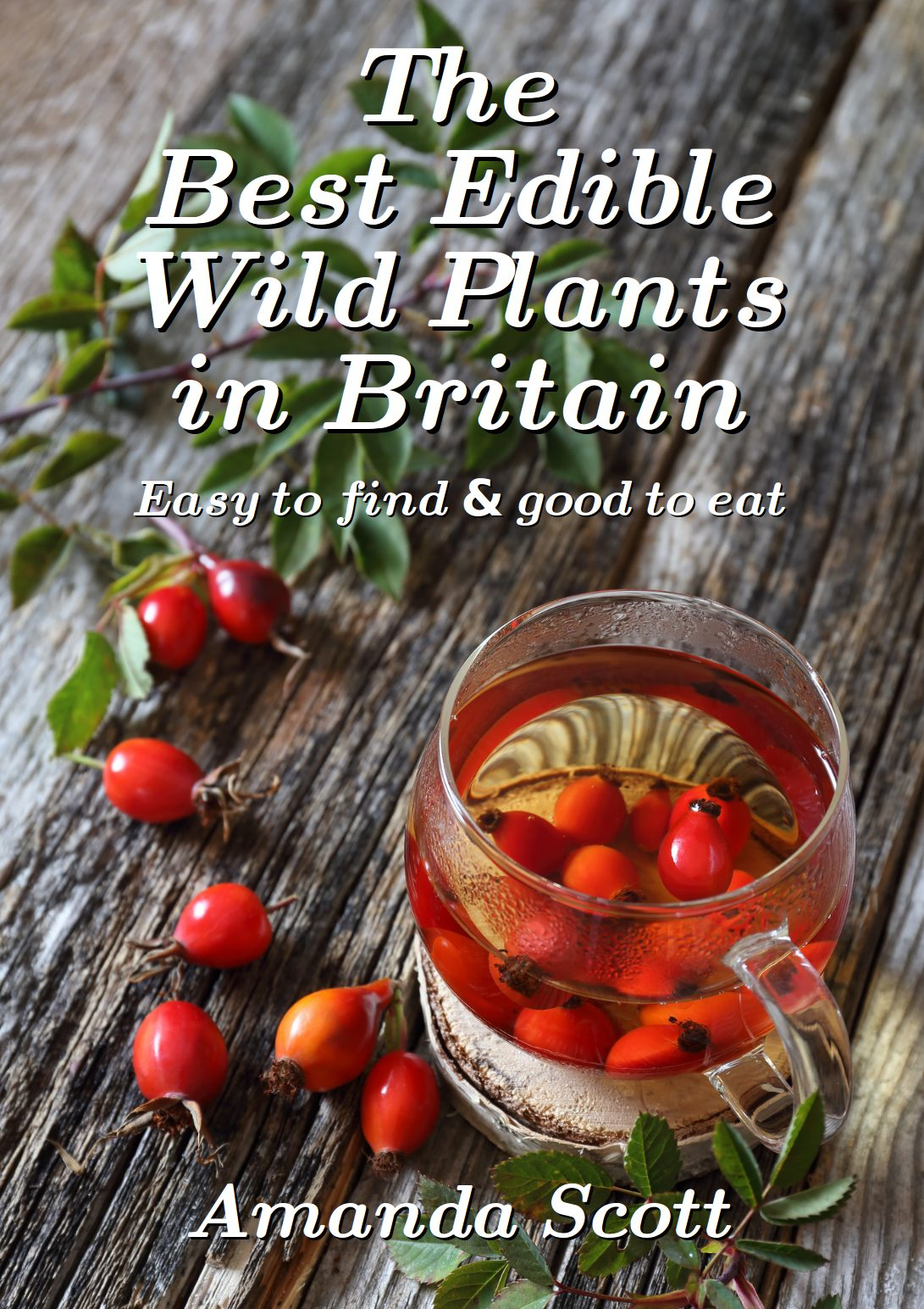 The Best Edible Wild Plants!