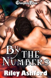 By the Numbers (Collection) by Riley Ashford